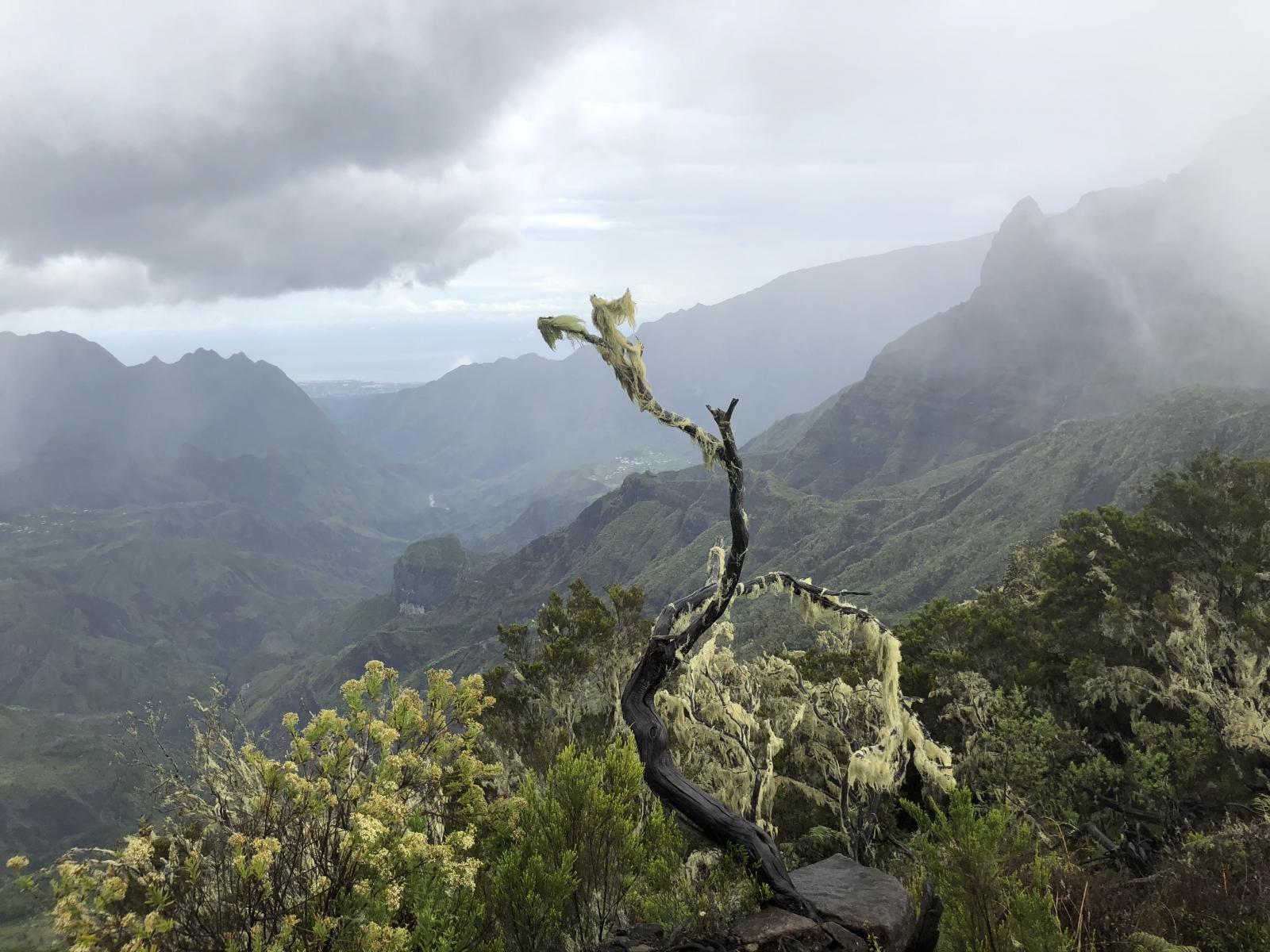 Île de la Réunion au sommet