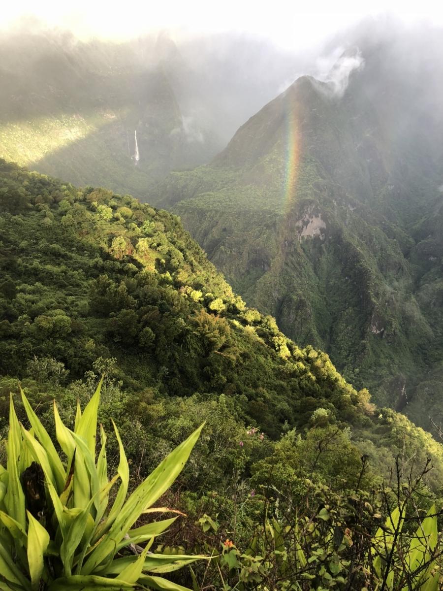 Île de la Réunion arc en ciel
