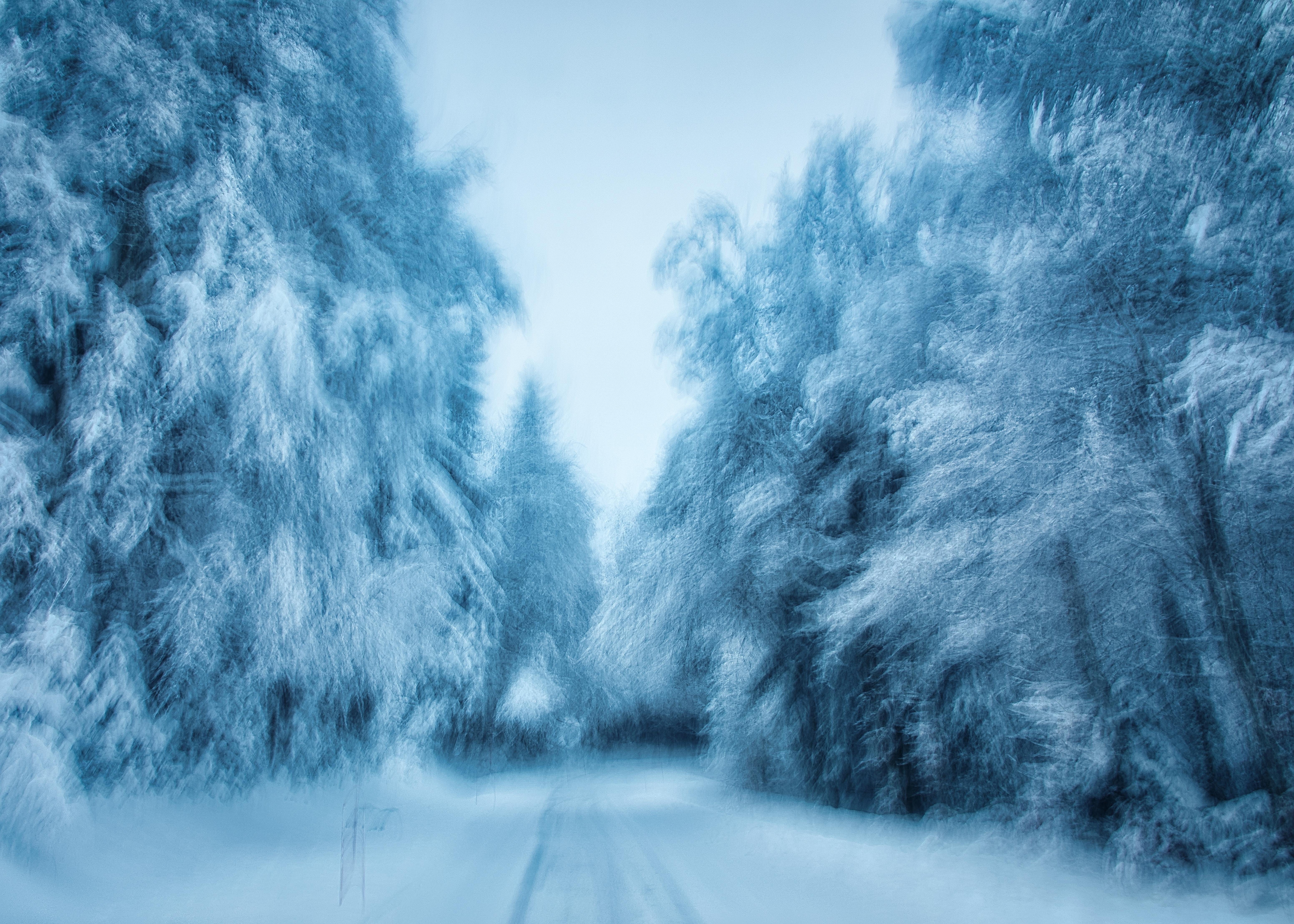 Arbre sous la neige en ICM pour bien commencer l'année nouvelle 2021 #ICM #neige #2021 #hope